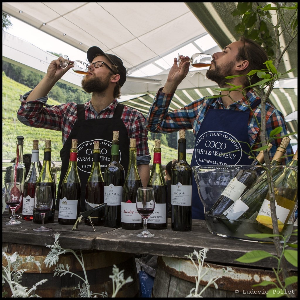 Retrouvez les aventures de Jean-Baptiste et de son acolyte Ludovic sur le site de Wine Explorers : http://www.wine-explorers.net/